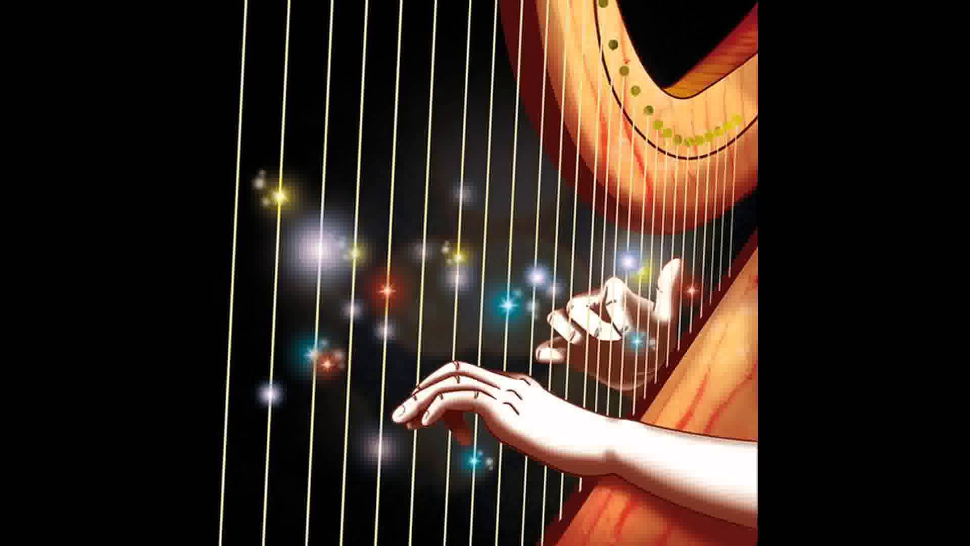 Anas Harp Costa Rica